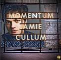 jamie-cullum